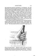 الصفحة 599